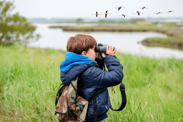 Autumn in Pearland | Bird Watching in Pearland